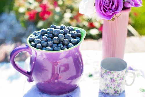 baby-meal-best-choices-blueberries