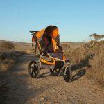 bob-revolution-se-single-stroller-25-w500-h500
